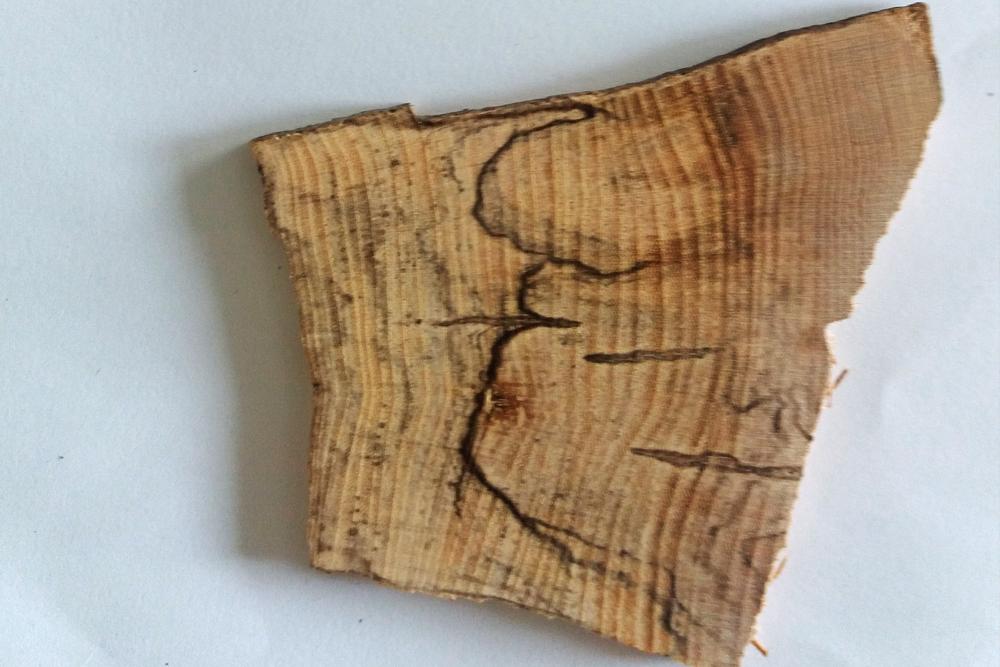 individuell gefertigtes Holzamulett mit Goldeinfassung